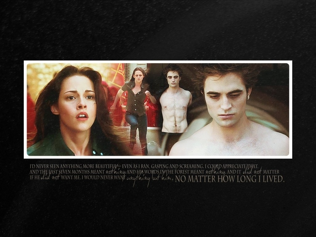 New-Moon-twilight-series-8256397-1024-768 - сумреки обои