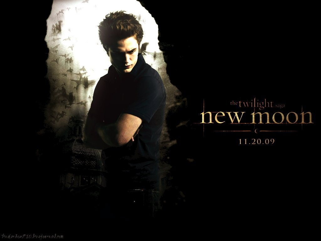 new-moon-twilight-series-6103218-1024-768 - сумреки обои