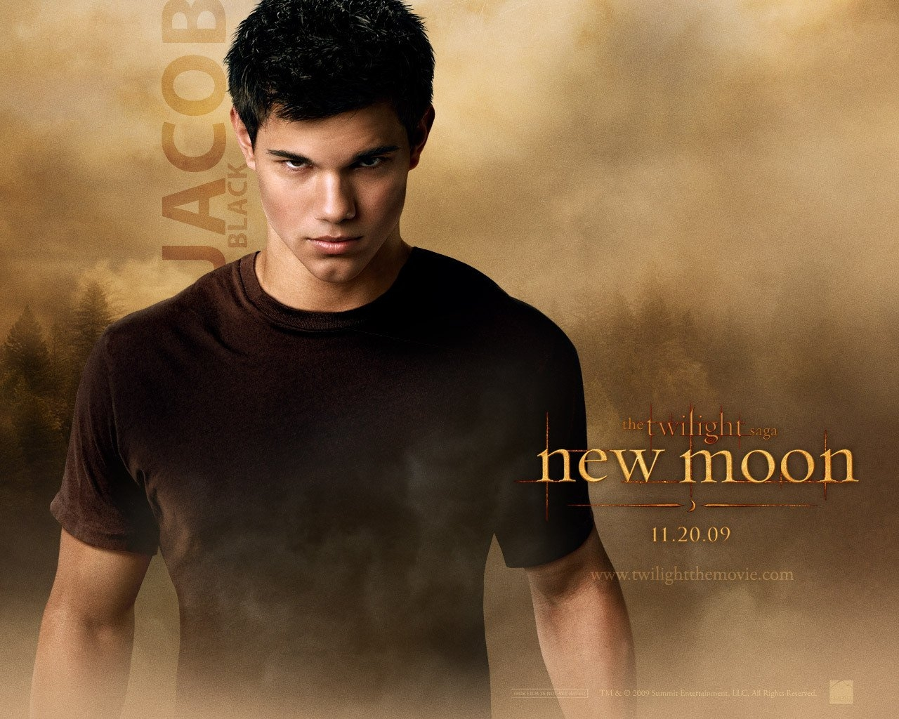 EXCLUSIVE-New-Moon-wallpapers-twilight-series-7245231-1280-1024 - сумреки обои