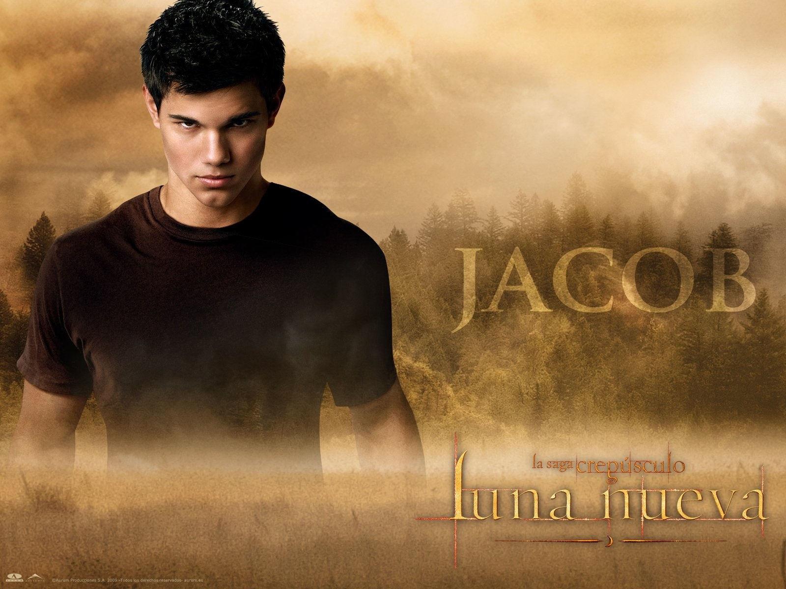 The-Twilight-Saga-New-Moon-Wallpapers22 - сумреки обои